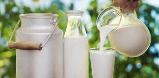 uống sữa đúng cách để tăng cân